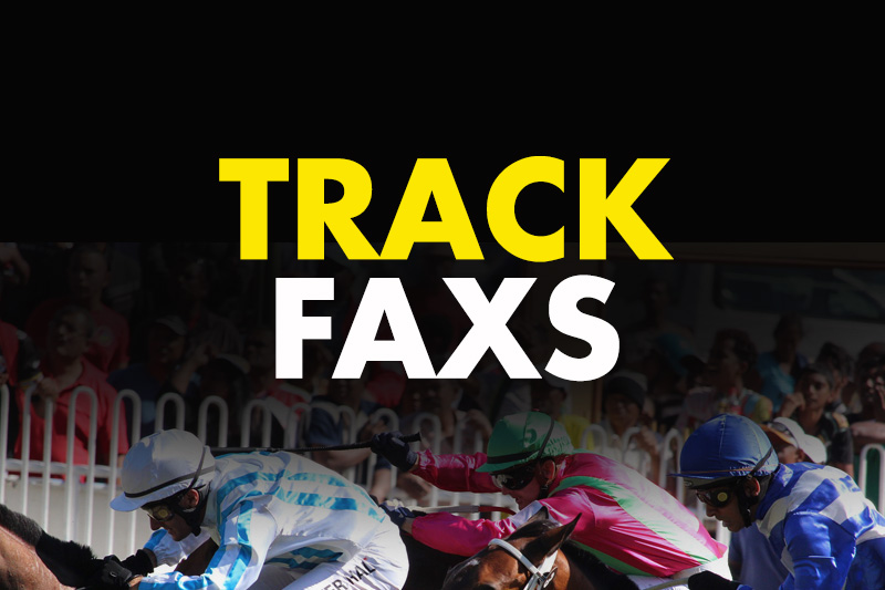 Bet Smarter with TRACKFAXS