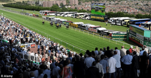 Racecourse stats and facts - TrackFaxs