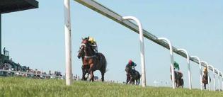 Brighton Racecourse image