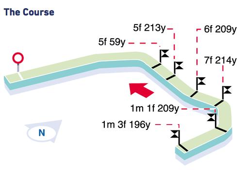 Brighton Racecourse - The course