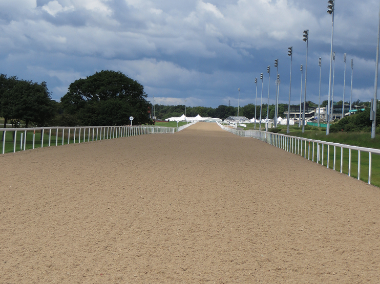 Newcastle Racecourse (All Weather)