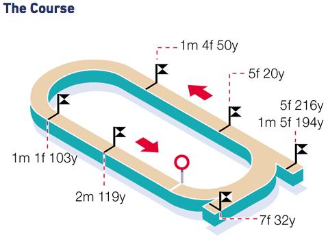 Wolverhampton Racecourse - The Track