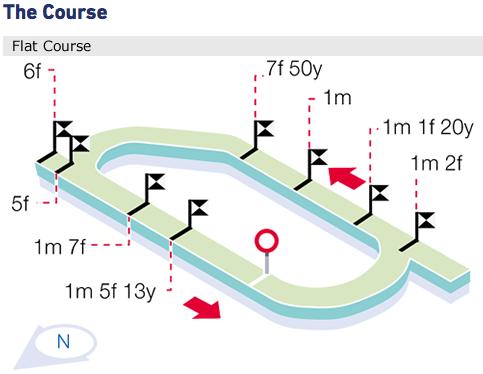 Ayr Racecourse - The Track
