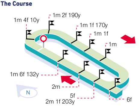 Ripon Racecourse - The Track