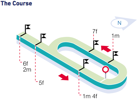 Thirsk Racecourse - The Track