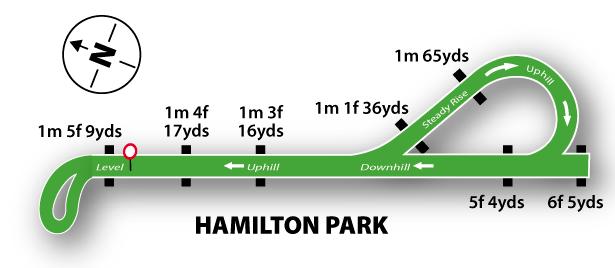 Hamilton Racecourse - The Track