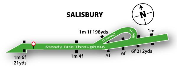 Salisbury Racecourse Track