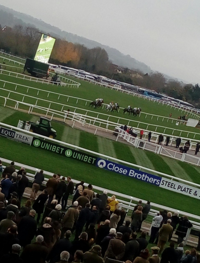 Great day at Cheltenham Races