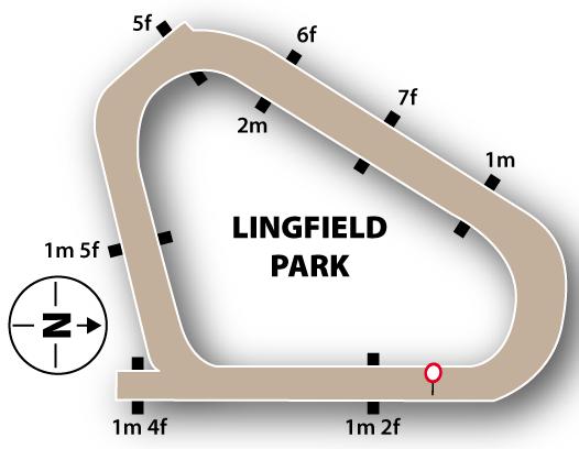 Lingfield AW track